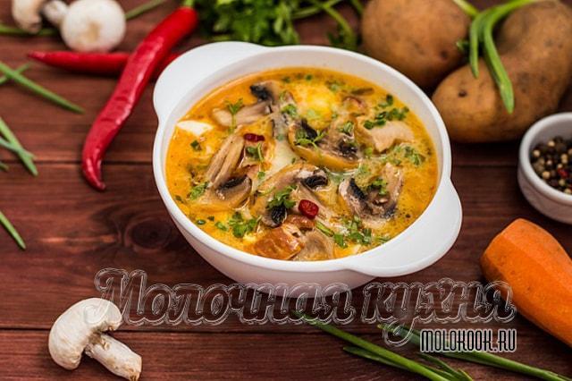 Суп с курицей, шампиньонами и плавленым сыром