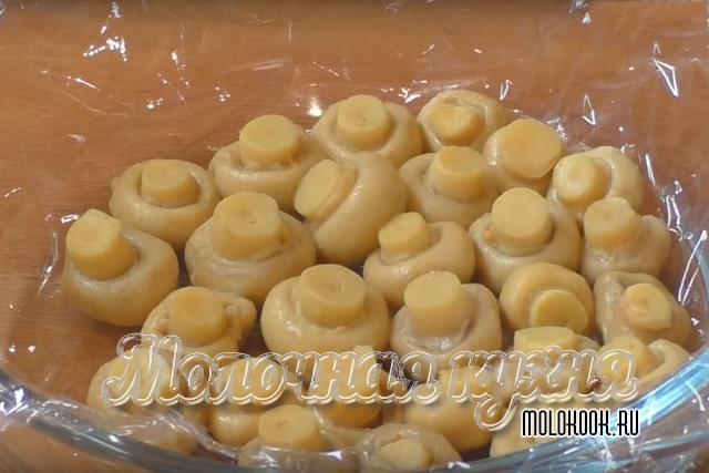 Распределение грибов