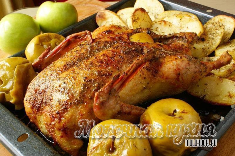 Рецепт гуся, запеченного в духовке с яблоками