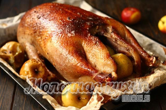Запеченный гусь с кусочками яблок, горчицей и медом