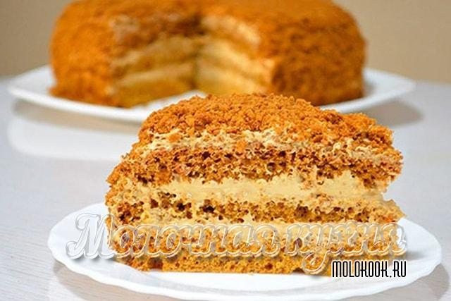 Торт из медового бисквита